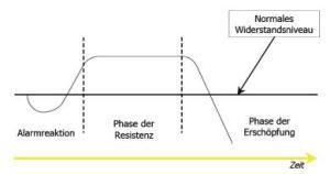 Seyles Stresstheorie